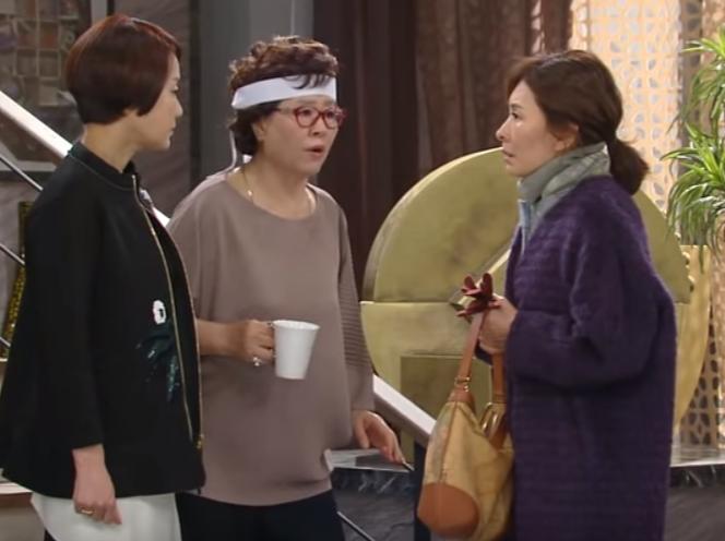 韓国ドラマ バラ色の恋人たち 28-30