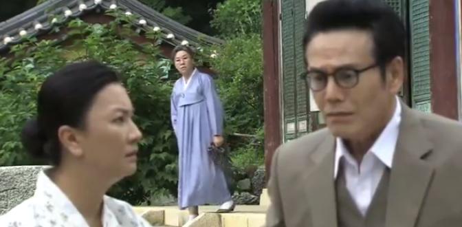 韓国ドラマ ウンヒの涙 19-21