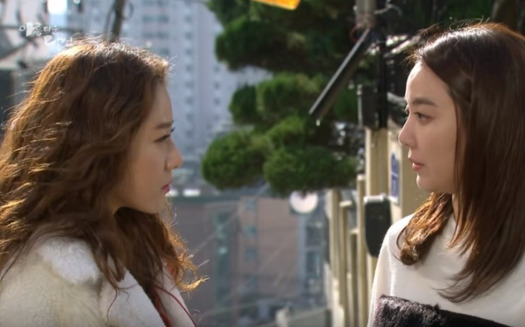 韓国ドラマ 秋のカノン(美しいあなた) 22-24