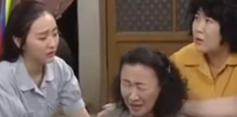 韓国ドラマ 私の心は花の雨 85-87