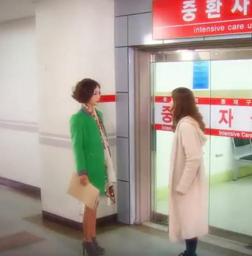 韓国ドラマ 嵐の女 19-21