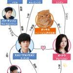 韓国ドラマ【想像ネコ】の相関図とキャスト情報